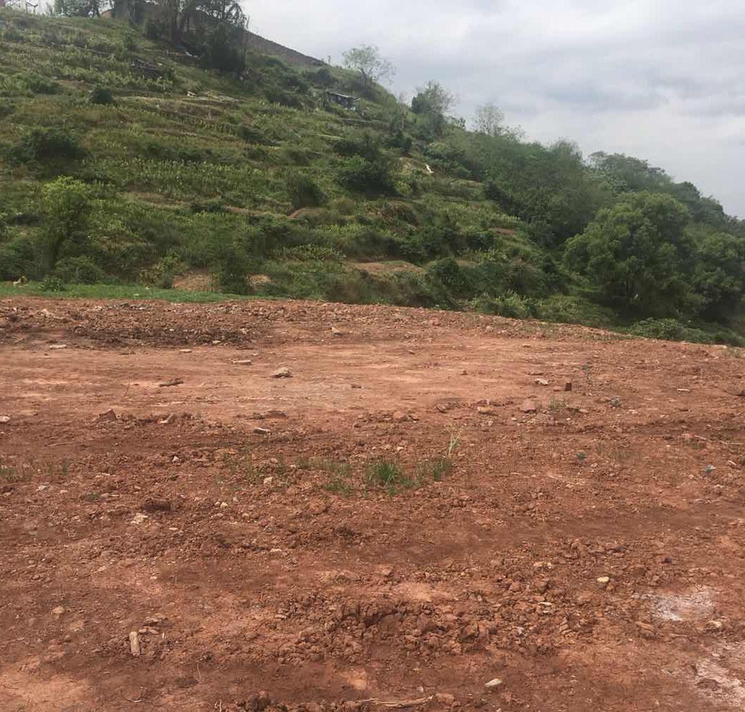 和友碱胺固废堆场土壤调查评估